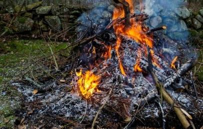 Comment brûler des branches dans son jardin ?
